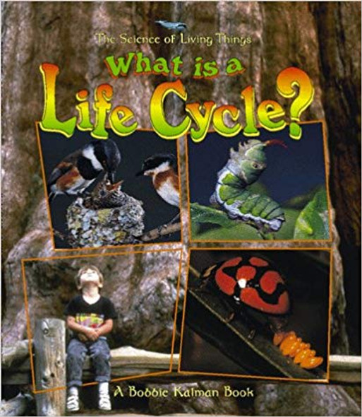What Is a Life Cycle? ( Science of Living Things ) Cover