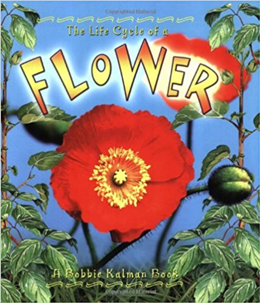 Flower ( Life Cycle of A...(Paperback) ) Cover