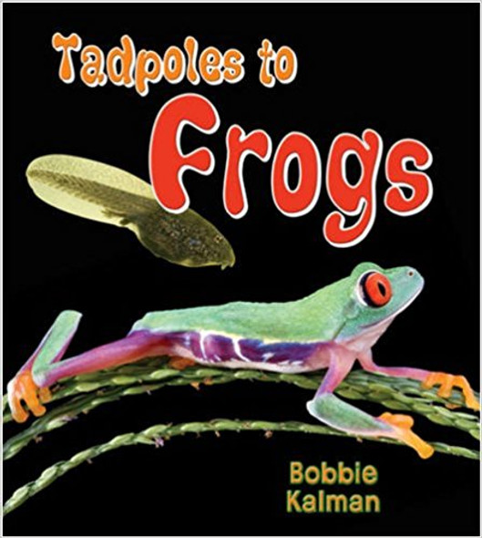 Tadpoles to Frogs ( It's Fun to Learn about Baby Animals (Paperback) ) Cover