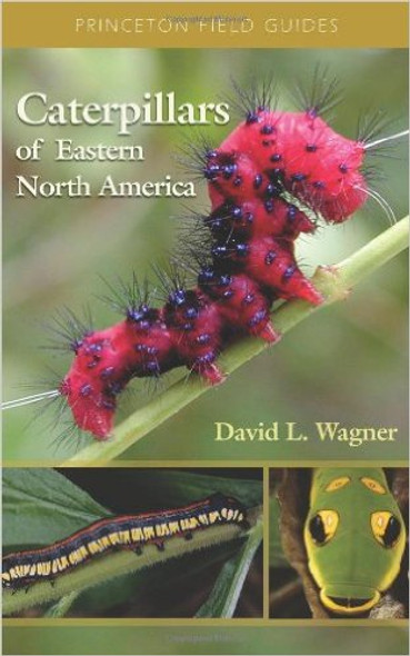 Caterpillars of Eastern North America: A Guide to Identification and Natural History Cover
