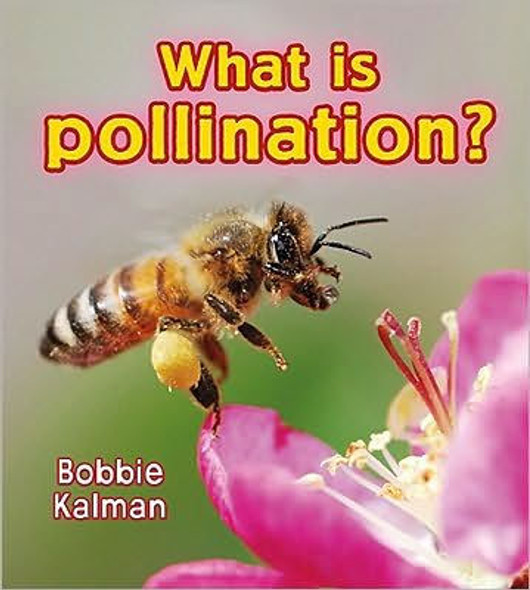 What is Pollination? [Paperback] Cover