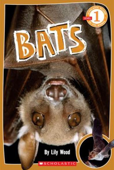 Bats [Paperback] Cover