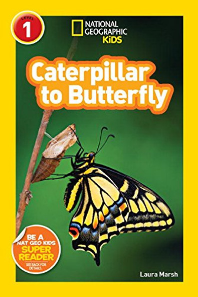 Caterpillar to Butterfly [Paperback] Cover