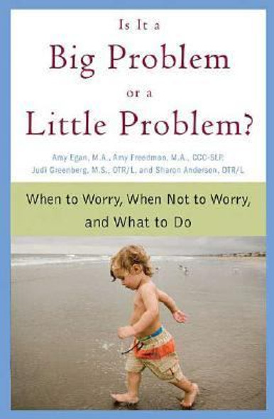 Is It a Big Problem or a Little Problem?: When to Worry, When Not to Worry, and What to Do [Paperback] Cover