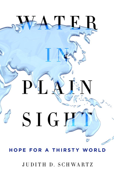 Water in Plain Sight: Hope for a Thirsty World [Hardcover] Cover