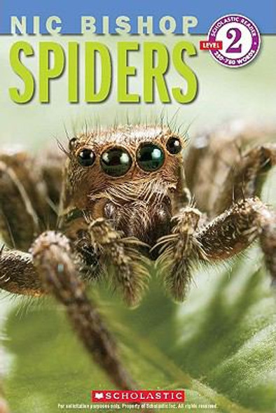 Spiders [Paperback] Cover