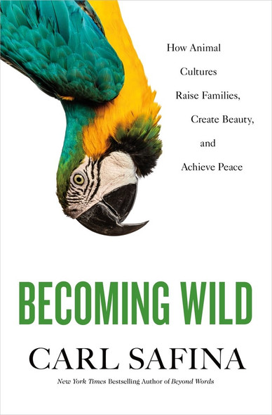 Becoming Wild: How Animal Cultures Raise Families, Create Beauty, and Achieve Peace by Carl Safina - Cover