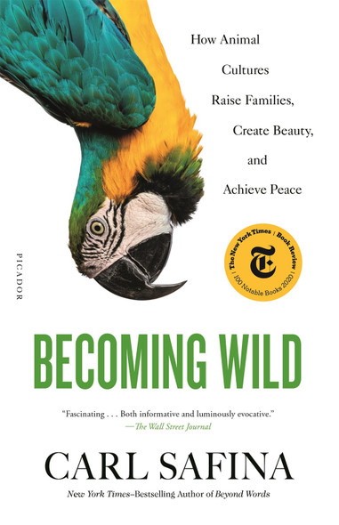 Becoming Wild: How Animal Cultures Raise Families, Create Beauty, and Achieve Peace [Paperback] by Carl Safina - Cover