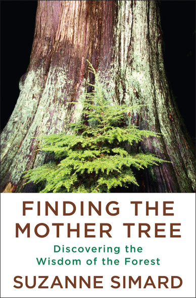 Finding the Mother Tree: Discovering the Wisdom of the Forest - Cover