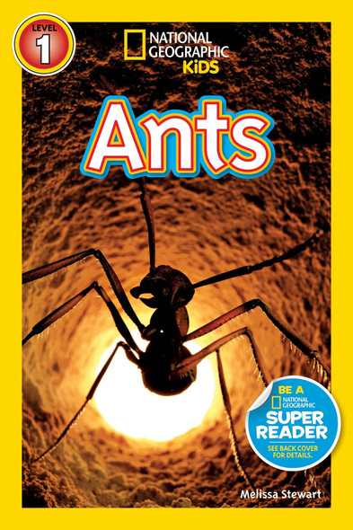 Ants - Cover
