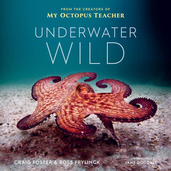 Underwater Wild: My Octopus Teacher's Extraordinary World - Cover