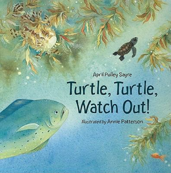 Turtle, Turtle, Watch Out! Cover