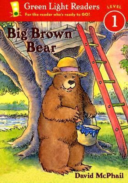 Big Brown Bear Cover