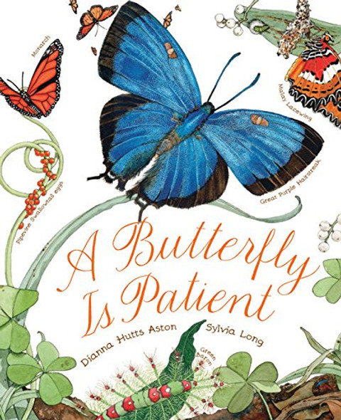 A Butterfly Is Patient Cover