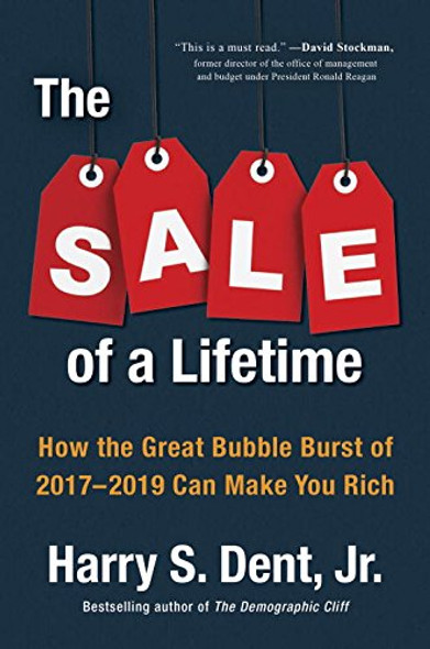 The Sale of a Lifetime: How the Great Bubble Burst of 2017-2019 Can Make You Rich Cover