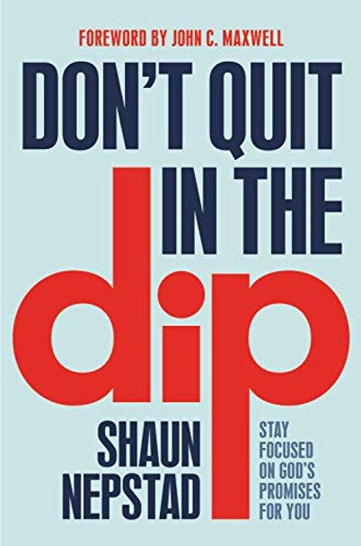 Don't Quit in the Dip: Stay Focused on God's Promises for You Cover