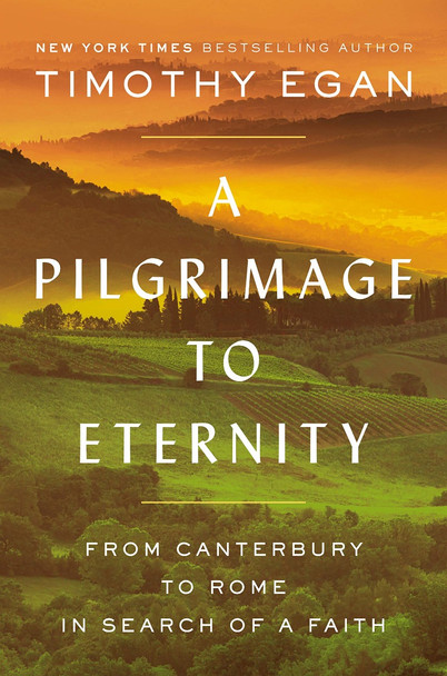 A Pilgrimage to Eternity: From Canterbury to Rome in Search of a Faith [Hardcover] Cover