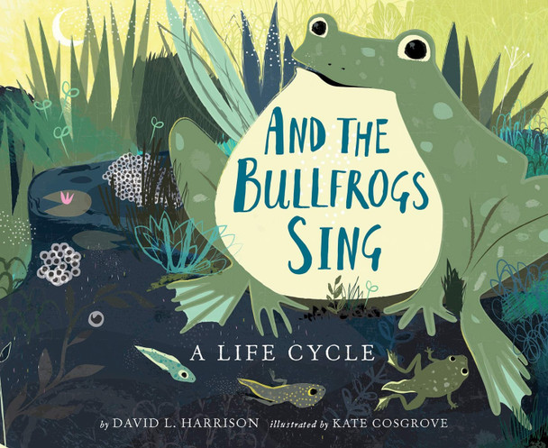 And the Bullfrogs Sing: A Life Cycle Begins Cover