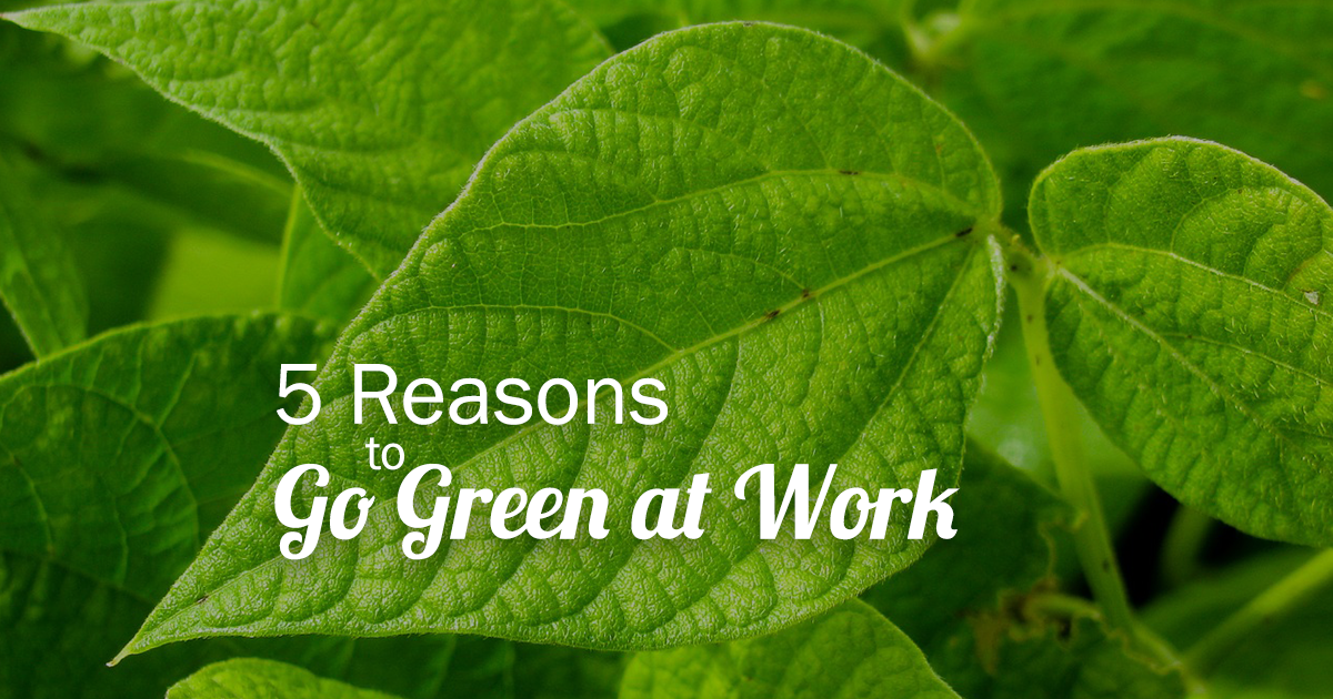5 reasons to go green at work - BookPal