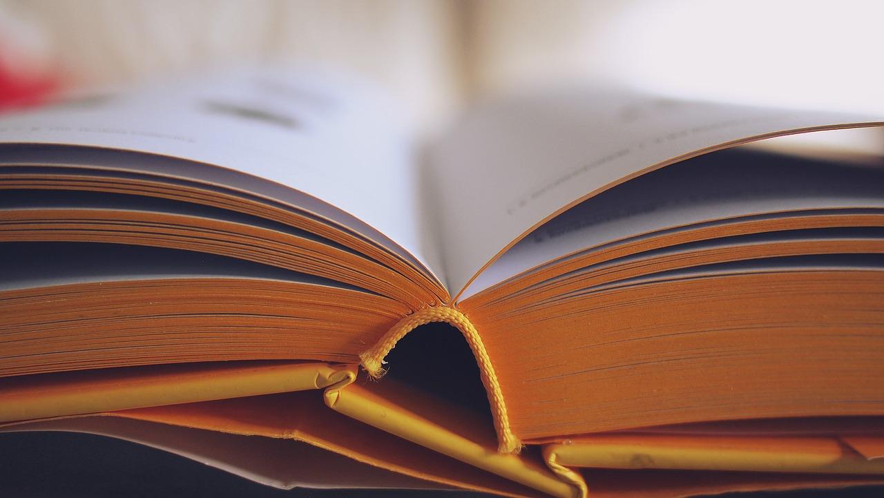 back to school books
