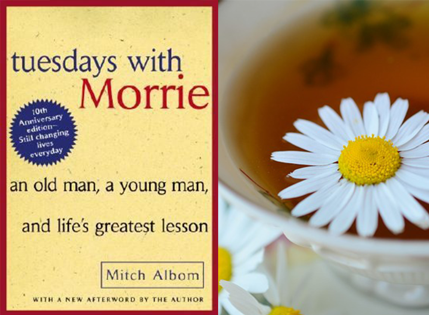 tuesdays with morrie books in bulk