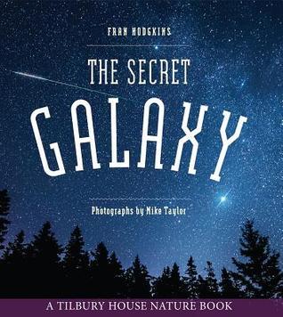 the secret galaxy