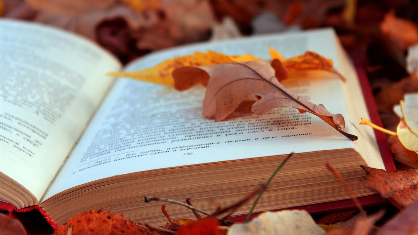 best new books this fall