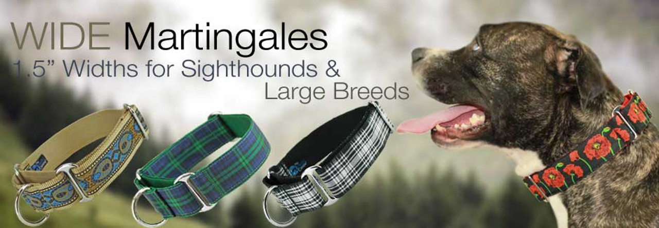 fall wide martingales