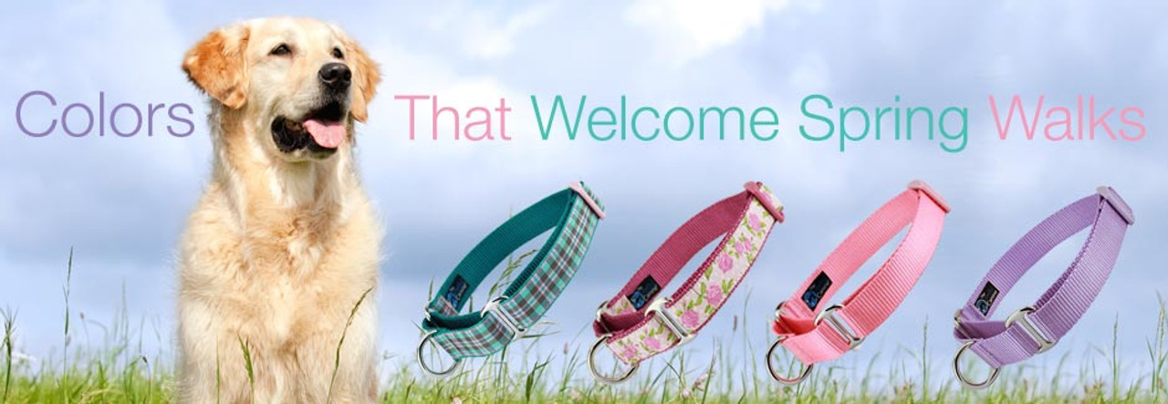 Spring Martingale Collars