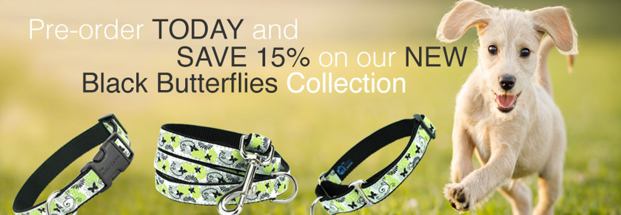 save 15% on black butterfly dog collars