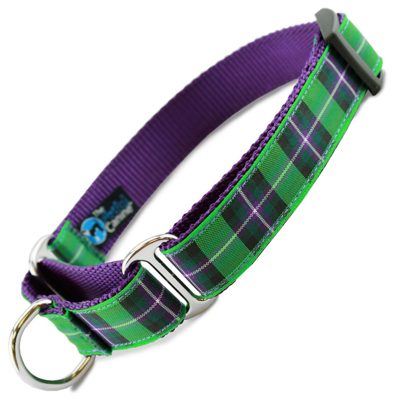 Purple tartan dog harness.