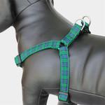 Plaid Dog harness, blackwatch Tartan, green & black choke-free step-in Harness