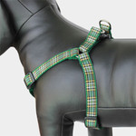 Plaid Dog Harness, Irish National Tartan, Choke-Free, Adjustable, Step in Style