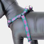 Plaid Dog harness, Lindsay Tartan, Choke-Free Step in Style Adustable Purple Nylon
