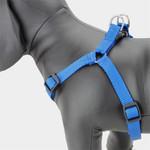 Blue Step in Dog Harness, Choke-Free, Nylon, Adjustable
