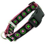 Irish Buckle Martingale Collar, Limited Slip Safety Collar, Pink, Celtic knot, shamrock, Ireland