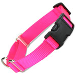 Martingale Dog Collar with Buckle, Hot Pink Nylon