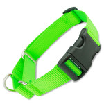 Martingale Dog Collar with Buckle, Lime Green Nylon