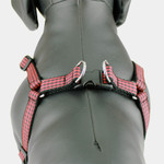 Buffalo Plaid Step In Dog Harness, Red & Black gingham, classic flannel Check, back view