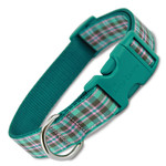 Preppy Puppy Plaid Dog Collar, Teal buckle, Teal, pink and brown