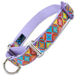 Spring Floral Martingale Collar, Spring Fashion dog collar, Easter dog collar, colorful