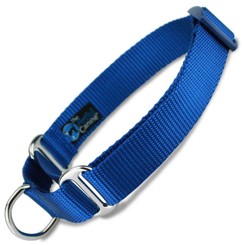 Martingale Dog Collar, Blue Nylon, Training Dog Collar, Safety Collar