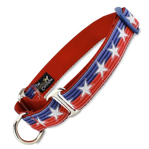 Patriotic Martingale dog Collar, Stars & Stripes, Limited Slip Safety Collar