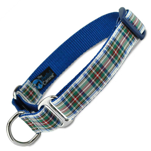Plaid Martingale Dog Collar, Dress Stuart Tartan, Safety Training Dog Collar
