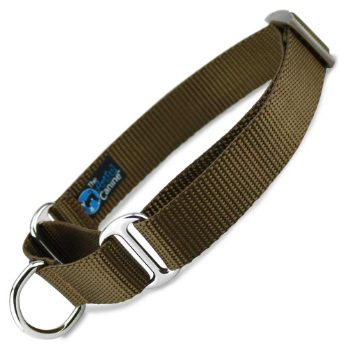 Martingale Dog Collar, Brown Nylon, Limited Slip Dog Collar