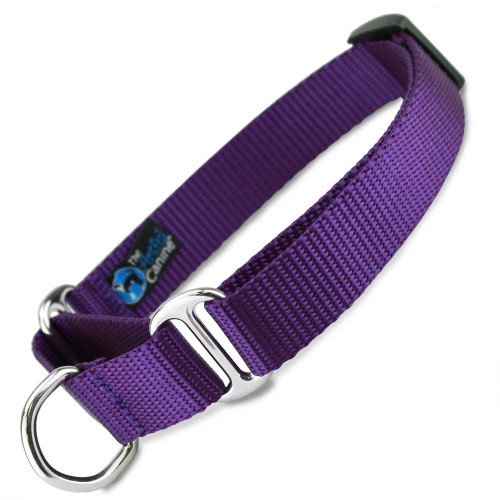 Martingale Dog Collar, Purple Nylon, Training Dog Collar, Safety Collar