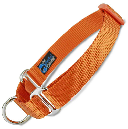 Orange Martingale Dog Collar, Nylon, Training Dog Collar, Safety Collar