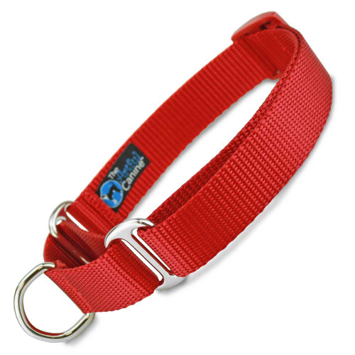 Red Martingale Dog Collar, Nylon, Training Dog Collar, Safety Collar