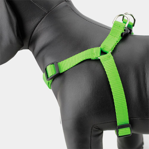 Lime Green Dog Harness, Step-in Style, Choke-free, Adjustable Nylon