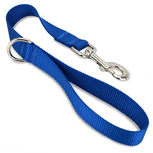 Short Traffic, City, Training Leash for Dogs, Blue Nylon